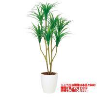 観葉植物 人工 樹木 コンシンネ 高さ1200mm Sサイズ 鉢:懸崖7号