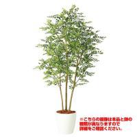 観葉植物 人工 樹木 ゴールデンリーフ FST 高さ1800mm Lサイズ 鉢:懸崖9号