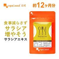 サラシア サプリメント サプリ ダイエット サラシノール 約1ヶ月分 送料無料 お一人様2個まで