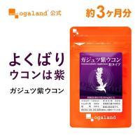 送料無料 お試し ポイント消化 ガジュツ 紫 ウコン (うこん) クルクミン(クルクメン) デキストリン サプリ サプリメント 約3ヶ月分