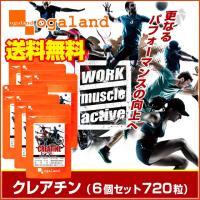クレアチン サプリ アミノ酸 スポーツ トレーニング サプリメント 720粒 【半年分】 _JH_ZRB
