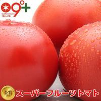 フルーツトマト とまと スーパーフルーツトマト小箱 8〜12玉 約800g 糖度9度以上 トマト 高糖度  茨城県 ギフト プレゼント フルーツ 産地直送