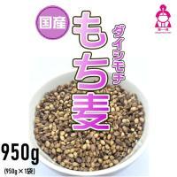 29年産岡山県産新ダイシチ紫もち麦が収穫されました。岡山県南部の岡山市南区は某ビールメーカーのビール...