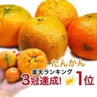 さわやかな香りと風味とすっきりした甘さの沖縄の冬のフルーツの定番です。 ビタミンC含有量が、温州みか...