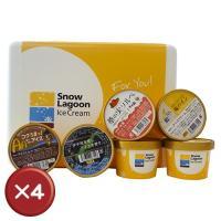 Snow Lagoon Ice Cream OKINAWAバラエティパック6個入りアイスクリーム4箱セット 送料無料