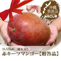 キーツマンゴーは赤い果実のアップルマンゴーと違い、黄緑のまま完熟し1玉1玉が大きいのが特徴ですが、宮...