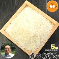 米 5kg 白米 送料無料