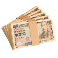 商品は、「ダミー用の100万円札束が5束」です。   ★使用例★  ・お札のマジックをする  ・ドッ...