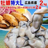 本場 広島産の特大Lサイズ!カキ2kg(1kg(正味850g)×2袋)セット! (かき カキ 牡蠣)...