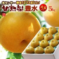 商品名 : 豊水梨 内容量/産地 : 3L-5L(約5kg)/日本(出荷時に旬の産地よりセンサー糖度...