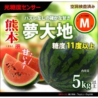商品名 : 夢大地 鹿本のスイカ 内容量/産地 : M×1玉(5-6kg)/熊本 発送時期 : 4月...