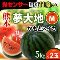 商品名 : 夢大地 鹿本のスイカ 内容量/産地 : M×2玉(計 10-12kg)/熊本 発送時期 ...