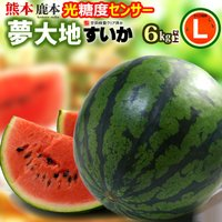商品名 : 夢大地 鹿本のスイカ 内容量/産地 : L×1玉(6-7kg)/熊本 発送時期 : 4月...