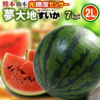 商品名 : 夢大地 鹿本のスイカ 内容量/産地 : 2L×1玉(7-8kg)/熊本 発送時期 : 4...