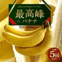 商品名 : 最高峰バナナ 内容量/産地 : 約700g×5袋/フィリピン 発送時期 : 通年 発送形...