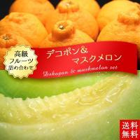 ■商品内容:マスクメロン1個、デコポン5個 ■産地:マスクメロン(高知県他)、デコポン(熊本県) ■...