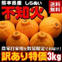 ■商品内容:約3kg、8〜15玉 ■産地:熊本県 ■出荷場所:東京都 ■配送形態:常温便 ■お届け:...