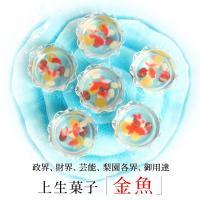 ■商品内容:上生菓子「金魚」×6個(1個あたり直径5.8cm×高さ3.2cm、重量約45g) ■原材...