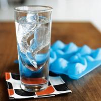 おしゃれな金魚の氷が作れる容器 アイスキューブトレイ♪ GAMAGO ガマゴ 氷の容器 アイスキュー...