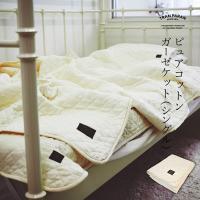 【SALE】肌掛け布団 ガーゼケット ピュアコットン シングル(約140cm×190cm)送料無料