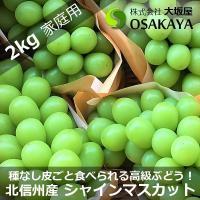 商品番号:shinemuscat2kg01 商品名 :長野県北信州 中野 山ノ内産 シャインマスカッ...