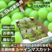 商品番号:shinemuscat350g10p01 商品名 :長野県北信州 中野 山ノ内産 シャイン...