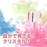 マジッククリスタル Magic Crystal おとぎの国 手作り クリスタル 夏休み 工作 育てる 雑貨 おもちゃ