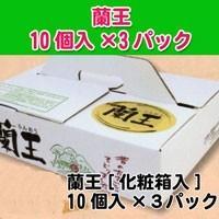蘭王パック「化粧箱入」10個入×3パック
