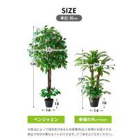 人工観葉植物 フェイクグリーン 光触媒 ベンジャミン 幸福の木(ドラセナ) 2本セット 送料無料