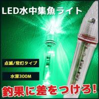 商品説明 水深300mまでOK 水中集魚灯ライトです。 点灯パターンはライト本体内にある切り替えスイ...