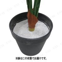 Funderful 人工観葉植物 ポトス 50cm フェイクグリーン ミニ 小さい ミニサイズ ミニ観葉植物