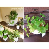 クローバー アーティフィシャルグリーン 観葉植物 植物 造花 ディスプレイ 光触媒 店舗什器 空気清浄 インテリア オブジェ