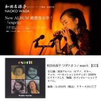 二重奏アルバム(ピアノ、ギター、チェロ、パーカッションとのデュオ)2009年にリリースした「和韻」の...