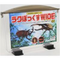 ラクぼっくすWIDE(幼虫用見える観察ケース)×4個セット