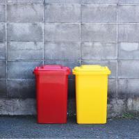 ゴミ箱 ダルトン 45L 蓋付き おしゃれ 屋外 100-146  大型ごみ箱 プラスチックトラッシュカン 45リットル