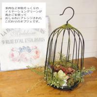 イミテーショングリーン フェイクグリーン 観葉植物 造花 鳥かご ケージ 雑貨