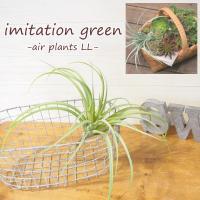 イミテーショングリーン フェイクグリーン 造花 多肉植物 インテリア 観葉植物 エアプランツ 雑貨 poshliving ポッシュリビング
