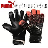 PUMA エヴォパワー2.3 プロテクト RC  エヴォパワー シリーズと、 デザイン、カラーフック...