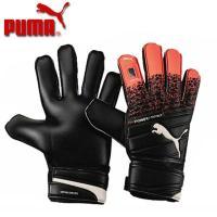 PUMA エヴォパワー3.3 プロテクト  エヴォパワー シリーズと、デザイン、 カラーフックアップ...