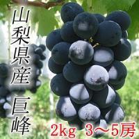 毎年売上ナンバー1の高級品種。「ブドウの王様」と称されるほど紫黒の大粒が特徴。 適度な酸味と高い糖度...