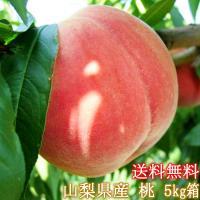 桃の生産量日本一を誇る山梨県からお得な5Kg(13〜22玉)入り。※多少前後有り。訳あり桃を農家より...
