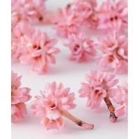 約2cm 約20g 約30個 *自然の生花や植物を原料としています。  *表示について 【この商品は...