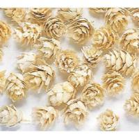 約1cm 約25g 約130個 *自然の生花や植物を原料としています。  *表示について 【この商品...
