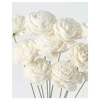 約19cmL 花径約2.5cm 1束10本 *自然の生花や植物を原料としています。  *表示について...