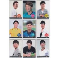 2016年4月発売、「プロ野球ai〜北海道日本ハムファイターズ2016〜」トレーディングカードのお品...