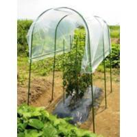 家庭菜園雨よけセットは降雨が苦手なトマトやナスから、 ひび割れの原因になる雨水の付着を防ぎます。  ...