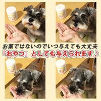 (がん、皮膚病、アレルギー、血尿血便に)犬用サプリメント ビガープラス プレミアムアルファ|pmall|05