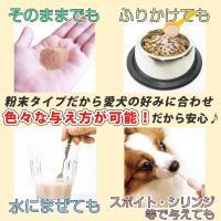 (がん、皮膚病、アレルギー、血尿血便に)犬用サプリメント ビガープラス プレミアムアルファ|pmall|06
