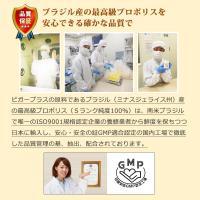 (てんかん、認知症、心臓病に)犬用サプリメント ビガープラス バイタル|pmall|06
