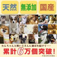 (腰痛、関節炎、脱臼癖に)犬用サプリメント ビガープラス アクティブ|pmall|07